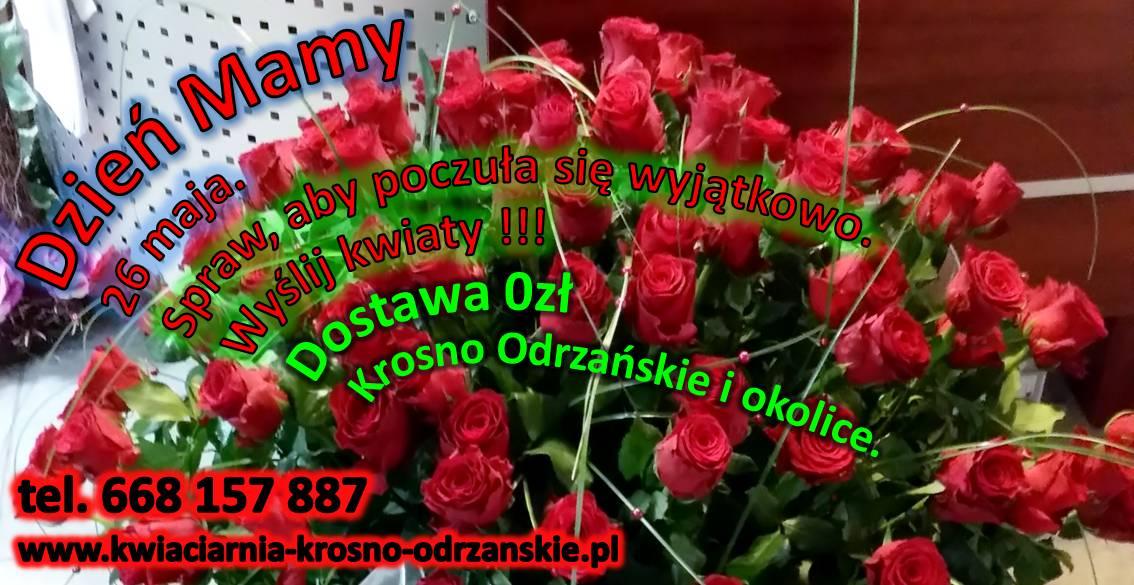 Dzień Matki Kwiaciarnia Krosno Odrzańskie